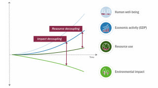 Decoupling Economic Activity from Resource Use